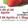 Festa della Fragola a Cassibile