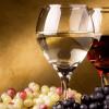 Wine Fest a Partanna